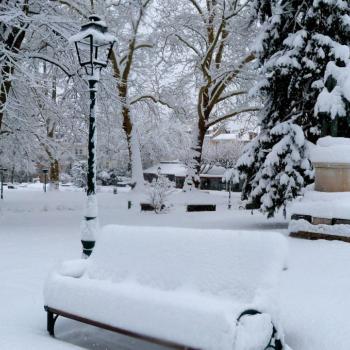 La neige de lundi 11 février 2013 dans le Nord et l'Est