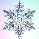 Les flocons de neige de Noël