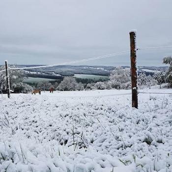 Froid, neige et tempête : retour de l'hiver pour débuter mai !